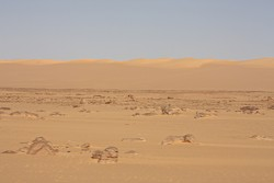 Libyan Desert Glass Field