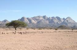 Figure 11. The Eastern Desert