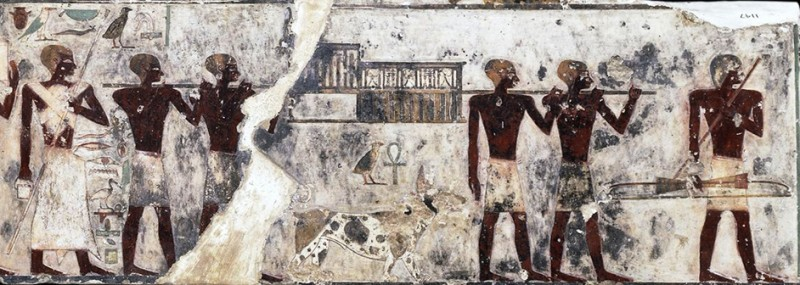 Figure 12. 12th Dynasty tomb of Djehutyhotep with pet dog Ankhu. Photograph courtesy of the British Museum