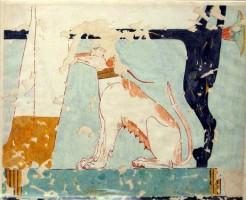 Figure 14. bHn dog beneath chair. Tomb of Nebamun. Photgraph by P. Gorgori