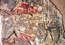 Figure 25. Dog turning to look at owner, Tomb of Renni el Kab. Photograph courtesy of Osirisnet