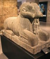 Amun Ram, Kawa